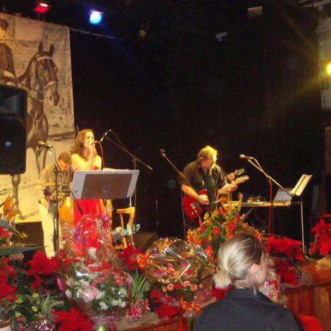 Ples v Lánech, 23.1.2016